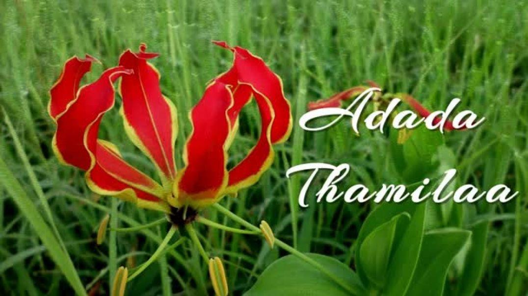 Tamil Eelam Song - Adada Thamilaa