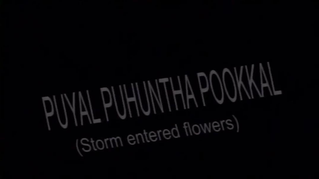 புயல் புகுந்த பூக்கள்  - Puyal Pukuntha Pookkal