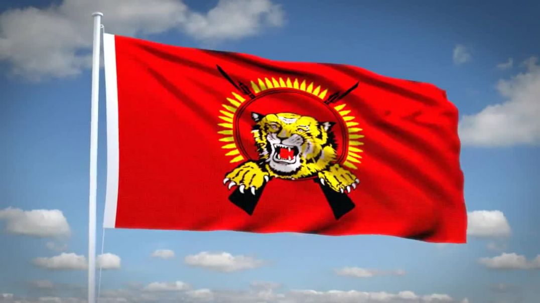 Tamil Eelam National Flag - HD