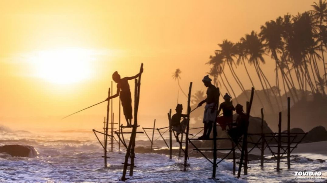 03 Amma Kadal Thaaye | அம்மா கடல்தாயே | Sea Tigers | அலை பாடும் பரணி