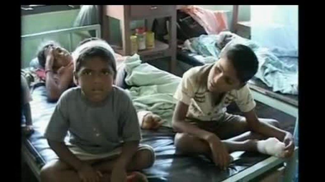 Lanka army had used cluster bombs