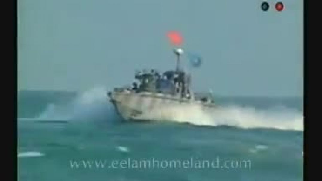 sea tigers heroes day - 2003 p2