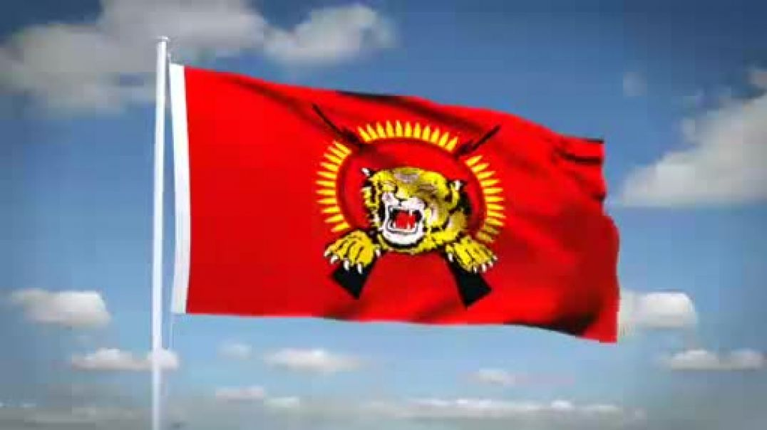 Tamil Eelam national flag explained in English
